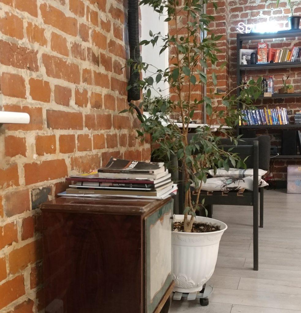 دکوراسیون زیباس هاستل، شامل قفسه ای از کتاب های رنگارنگ شامل رمان های معروف و راهنمای های سفر در کشور های مختلف
