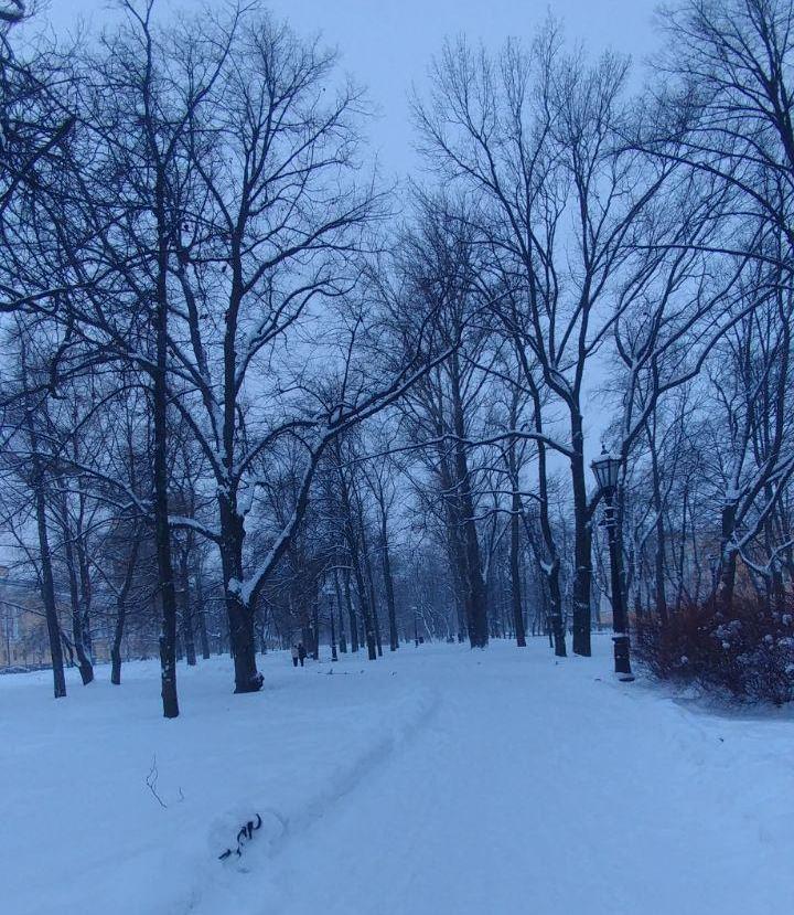 باغ الکساندر سفیدپوش